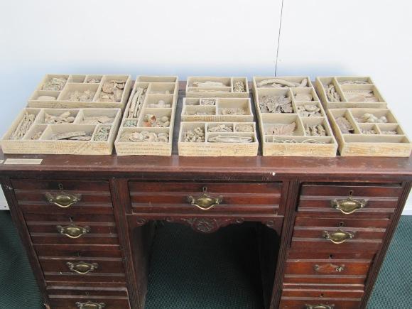 Upton Memory Boxes