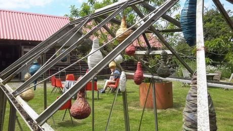 sunneyhill cocoons
